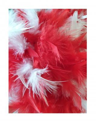 N1-55-56 rot mit Goldborte und rot-weißer Boa Kinder-Damen Funkenhut Gr.55-56 - 4